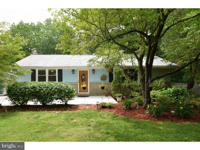 Phoenixville Single Family Home For Sale: 982 Spring City Road