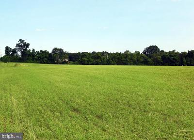 Harford County, Howard County Residential Lots & Land For Sale: 2031 Whiteford Road