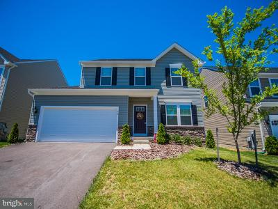 Falling Waters Single Family Home For Sale: 92 Sirocco