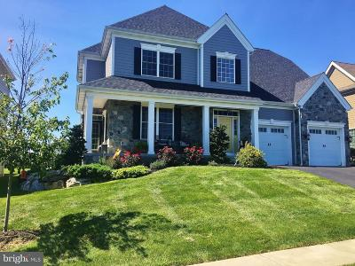 Lititz Single Family Home For Sale: 665 Integrity Drive