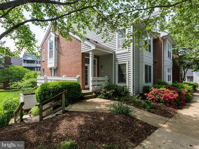 Annandale, Falls Church Single Family Home For Sale: 3152 Anchorway Court #F