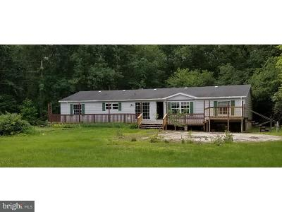 Millville Single Family Home For Sale: 23 Park Drive