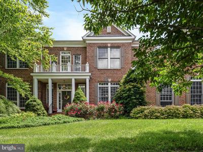 Loudoun County Single Family Home For Sale: 24148 Heather Hill Place