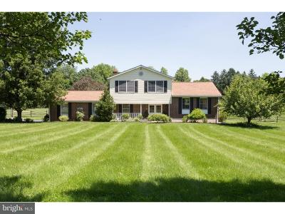 East Vincent Single Family Home For Sale: 103 Patience Lane