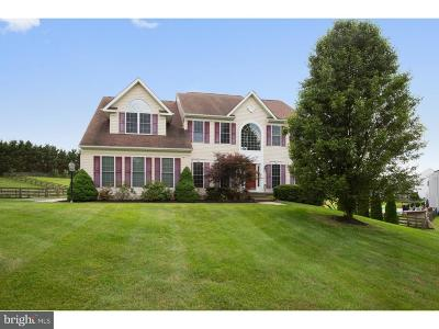 Port Deposit Single Family Home Active Under Contract: 55 McCormick