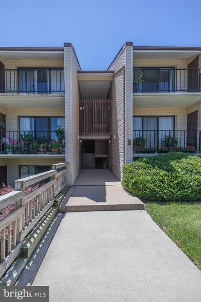 Annapolis Condo For Sale: 2572 Riva Road #15B