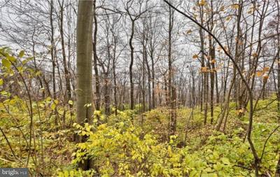 Lancaster County Residential Lots & Land For Sale: Lot 2 Black Diamond Road