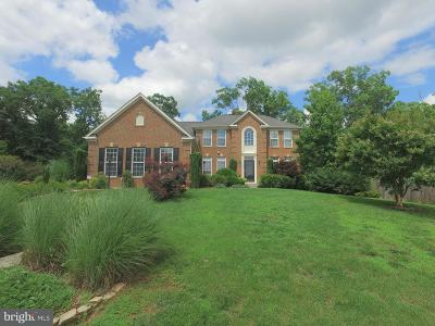 Single Family Home For Sale: 11330 Long Branch Way