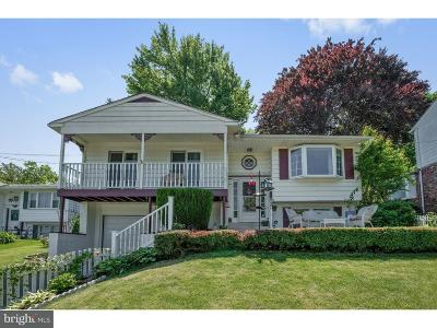 Ridley Park Single Family Home For Sale: 208 W Ridley Avenue