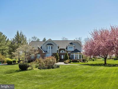 Howard County Single Family Home For Sale: 1800 Boka Valley Court