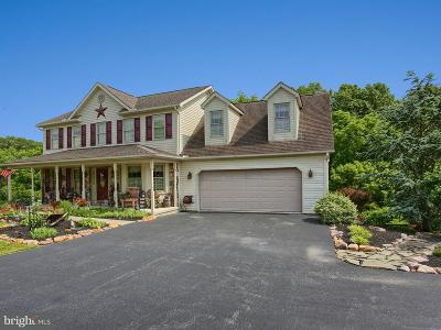 Newville Single Family Home For Sale: 113 Flintstone Drive