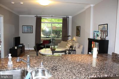 Annapolis Single Family Home For Sale: 66 Franklin Street #109