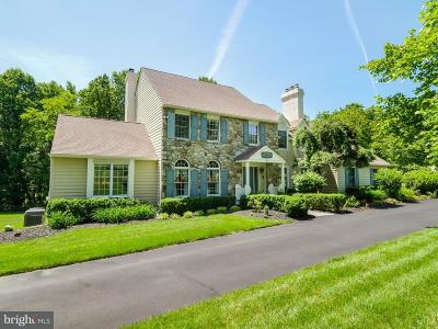 Solebury Single Family Home For Sale: 33 Bridlewood Drive