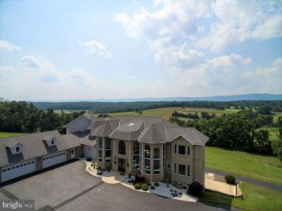 Farm For Sale: 340 Ridge Hollow Road