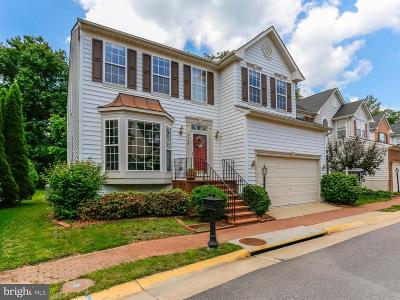 Lorton Single Family Home For Sale: 9134 Stonegarden Drive