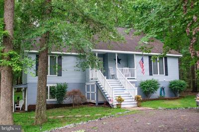 Locust Grove VA Single Family Home For Sale: $295,000