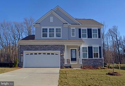 Clarksville, Columbia, Ellicott City, Laurel Single Family Home For Sale: 5626 Oakland Mills Road