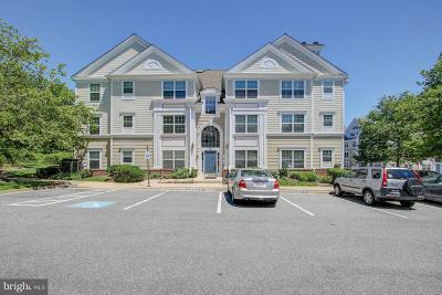Gaithersburg Condo For Sale: 172 Kendrick Place #24