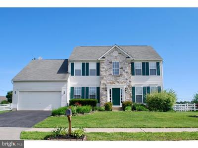 Middletown Single Family Home For Sale: 2 E Shakespeare Drive
