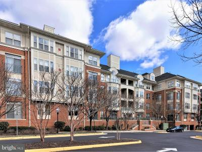 Reston Single Family Home For Sale: 1860 Stratford Park Place #304