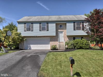 Dillsburg Single Family Home For Sale: 43 Wooded Run Drive