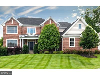 Chester Springs Single Family Home For Sale: 3958 Powell Road