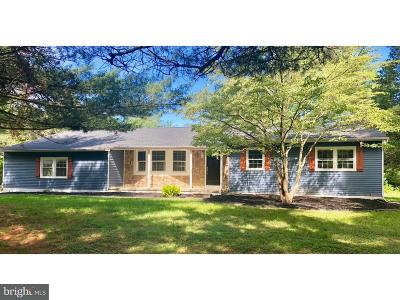Franklin Twp Single Family Home For Sale: 263 S Blue Bell Road