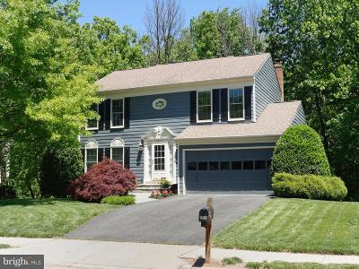 Fairfax County Single Family Home For Sale: 5232 Glen Meadow Road