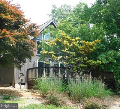 Hedgesville Single Family Home For Sale: 373 Lookout Ridge