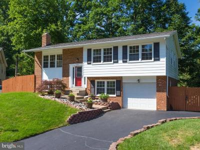 Fairfax County Single Family Home For Sale: 7205 Ashview Drive