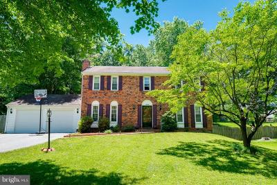 Silver Spring Single Family Home For Sale: 14108 Woodwell Terrace