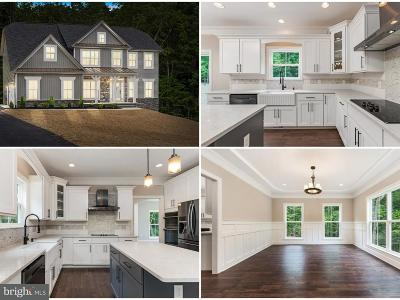 Fredericksburg City, Stafford County Single Family Home For Sale: 154 Doe Way
