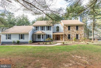 Chester County Single Family Home For Sale: 110 Stonepine Drive