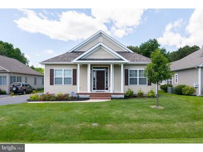 Milford Single Family Home For Sale: 19 Little Birch Drive