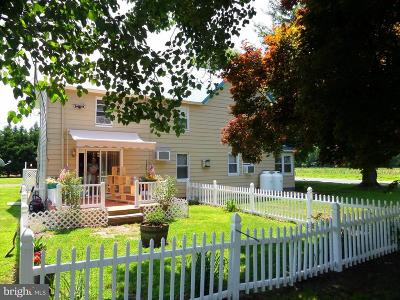 Georgetown Single Family Home For Sale: 24531 Bethesda Road