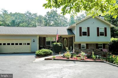 Waldorf Single Family Home For Sale: 4550 Young Road