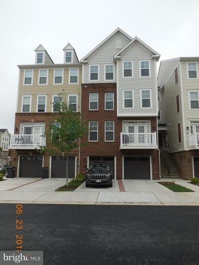 Chantilly Condo For Sale: 25223 Briargate Terrace