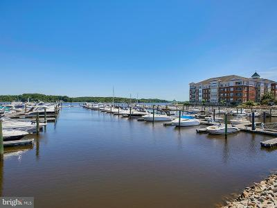 Woodbridge Single Family Home For Sale: 500 Belmont Bay Drive #316