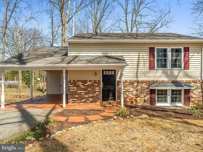 Warrenton Single Family Home For Sale: 7239 Marr Drive