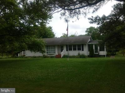 Deal Island Single Family Home For Sale: 23355 Osburn Webster Road