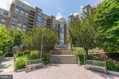 Reston Rental For Rent: 11800 Sunset Hills Road #1015