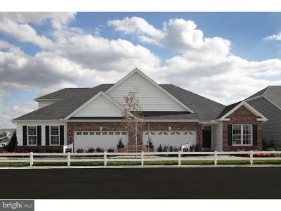 Lititz Single Family Home For Sale: 1068 Constitution Drive
