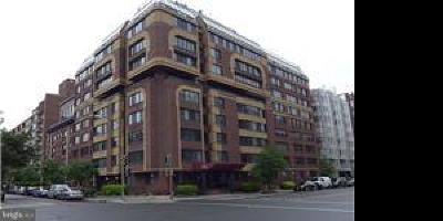 Washington Condo For Sale: 1245 13th Street NW #215