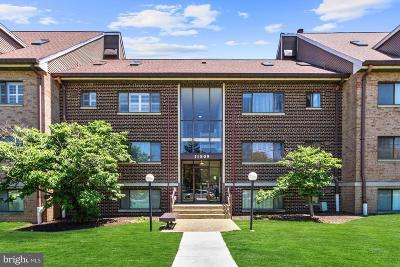 Silver Spring Single Family Home For Sale: 11509 Amherst Avenue #51