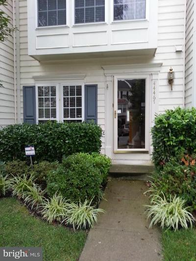 Ashburn Rental For Rent: 44467 Potter Terrace