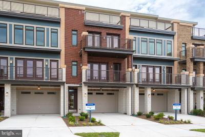 Ashburn Townhouse For Sale: Track Bed Terrace - Georgetown