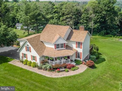 Middletown Single Family Home For Sale: 9022 Old Hagerstown Road