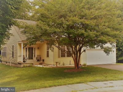 Selbyville Single Family Home For Sale: 64 Buntings Mill Court