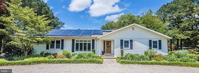 Selbyville Single Family Home For Sale: 32203 Lighthouse Road