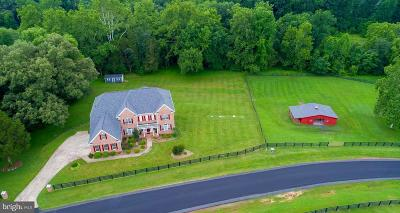 Bristow, Nokesville Single Family Home For Sale: 13500 Saratoga Springs Way